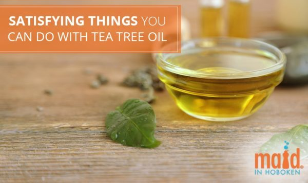 Satisfying Things you Can Do with Tea Tree Oil
