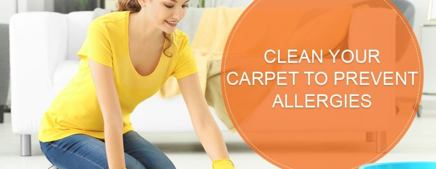 Clean your Carpet to Prevent Allergies