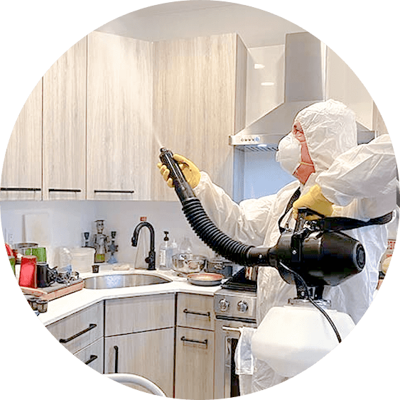 home-disinfection-service-img